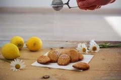 Detail van Franse zoete eigengemaakte gebakjemadeleines met citroenschil Stock Afbeeldingen