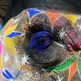 Detail van gekleurd olifantshoofd Royalty-vrije Stock Foto's