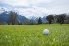 Detail van golfbal op gras Stock Fotografie