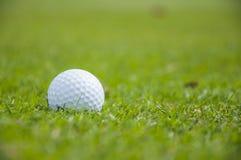 Detail van golfbal op gras Royalty-vrije Stock Foto's