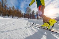 Detail van het bergopwaartse ski reizen stock fotografie