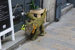 Detail van het Festival van Bloemen in Girona, Spanje Stock Afbeeldingen