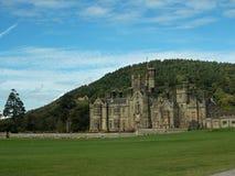 Detail van het kasteel stock fotografie