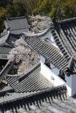 Detail van het Kasteel van Himeji, Japan stock foto