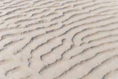 Detail van het zandige strand Stock Afbeelding