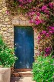 Detail van kleurrijke die ingangsdeur door bloemen wordt omringd royalty-vrije stock foto