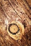 Detail van knoop op hout zonder schors Royalty-vrije Stock Afbeelding