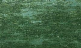Detail van mos en korstmos op houten geverniste oppervlakte stock afbeelding
