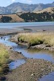 Detail van rivier Okuti Royalty-vrije Stock Afbeeldingen