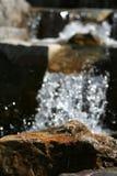 detail van rots in rivier royalty-vrije stock afbeeldingen