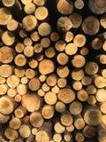 Detail van stapel van gesneden houtlogboeken - registreren, bosbouwachtergrond stock fotografie