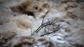 Detail van tak dat zich aan de macht van het rusteloze water verzet tegen stock video
