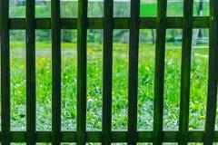Detail van traliewerk met grasgebied achter het Stock Fotografie