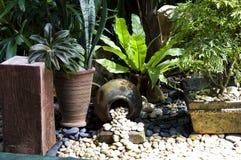 Detail van tropische tuin in Boracay royalty-vrije stock fotografie