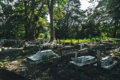 Detail van vele die kruisen over hun respectieve graven in worden geplaatst royalty-vrije stock afbeelding