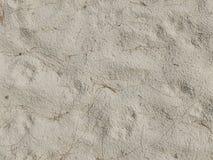 Detail van zand achtergrondtextuur en droog installatiezeewier Royalty-vrije Stock Afbeeldingen