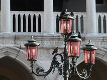 Detail of a Venetian pink street lamp with pigeons. The famous Venetian lanterns on the Piazza San Marco, made of pink Murano glass, give a unique flavor to the stock image