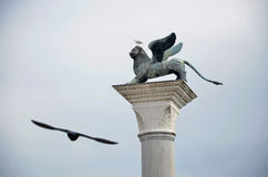 Detail of Venice Lion and Seagull Royalty Free Stock Photography