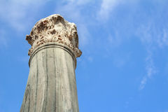 Detail of vertical damaged Corinthian order column Stock Photo