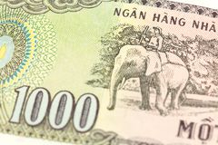 Detail of a 1000 vietnamese bank note reverse stock image