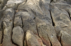 Detail view on a abrasion rocky Stock Images
