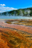 Detail view of Grand prismatic colorful hot spring, Yellowstone Royalty Free Stock Images