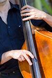 Musician playing double-bass. Detail view of a man playing double bass Stock Photos