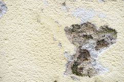 Detail view of mold in a house wall facade, outdoors. Mold damage in an exterior house wall facade, close up royalty free stock photography