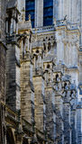 Detail view Notre Dame de Paris Stock Photography