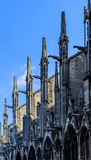 Detail view Notre Dame de Paris Royalty Free Stock Image