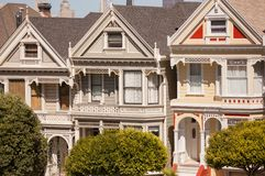 Detail view Painted Ladies Royalty Free Stock Photos
