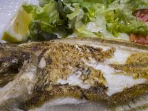 Detail view of a plate of grilled sole stock photography