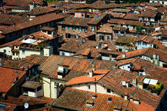 Detail view at rooftops of Lucca city, Tuscany, Italy. Royalty Free Stock Photo