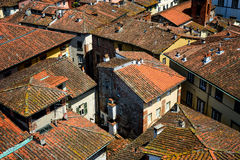 Detail view at rooftops of Lucca city, Tuscany, Italy. Royalty Free Stock Photos