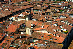 Detail view at rooftops of Lucca city, Tuscany, Italy. Stock Images
