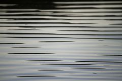 Smooth waves. Detail view of some very smooth waves on the water Stock Image