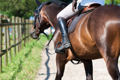 Detail view to horse and horseman Royalty Free Stock Photo