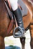 Detail view to horseman Royalty Free Stock Image