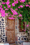 Detail of vintage wooden door and colorful flowers Royalty Free Stock Photography