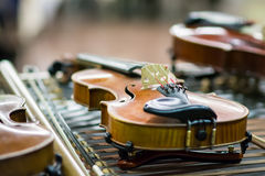 Detail of violins Royalty Free Stock Photos