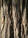 Detail von einem Kabel Lizenzfreie Stockfotos