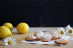 Detail von französischen süßen selbst gemachten Gebäck madeleines mit Zitroneneifer Stockbilder