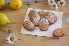 Detail von französischen süßen selbst gemachten Gebäck madeleines mit Zitroneneifer Lizenzfreies Stockbild