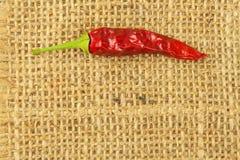 Detail von getrockneten Paprikas auf Gewebehintergrund Gewürze für das Grillen Verkauf von Gewürzen Stockfoto