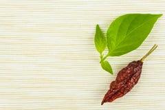 Detail von getrockneten Paprikas auf Gewebehintergrund Gewürze für das Grillen Verkauf von Gewürzen Stockfotos