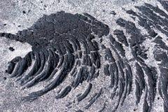 Detail von Lava mit Sand Stockfotografie