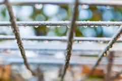 Detail von Regentropfen auf Metallzaun im Winter Stockfoto