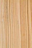 Detail vonseiten eines alten Buches Lizenzfreie Stockbilder