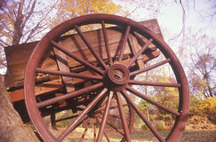 Detail of wagon in autumn at the Historical Henry Wick House, Morristown Park, New Jersey Royalty Free Stock Photo