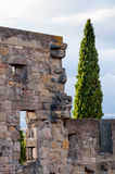 Detail of wall from Carcassonne medieval city Royalty Free Stock Image